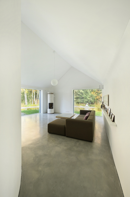 rheinzink y house5