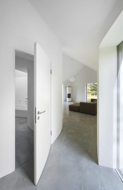 rheinzink y house6